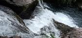 20210120北橫拉拉山 森林溪秘境 :2020.1029-1030_201031_2.jpg