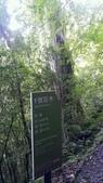 20200703『拉拉山深度3日』  神木、明池、水蜜桃 :20200705拉拉山 (3).jpg