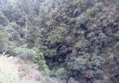 20210120北橫拉拉山原始林 檜木公路:20210119拉拉山踩線_210121_17.jpg