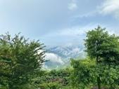 20200703『拉拉山深度3日』  神木、明池、水蜜桃 :20200705拉拉山 (37).jpg