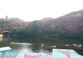 20171023山東濟南(紅葉谷景區):紅葉谷風景區 (53).jpg