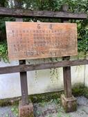 20200703『拉拉山深度3日』  神木、明池、水蜜桃 :20200705拉拉山 (64).jpg