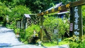 20200703『拉拉山深度3日』  神木、明池、水蜜桃 :20200705拉拉山 (112).jpg
