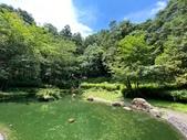 20200703『拉拉山深度3日』  神木、明池、水蜜桃 :20200705拉拉山 (61).jpg