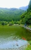 20200703『拉拉山深度3日』  神木、明池、水蜜桃 :20200705拉拉山 (145).jpg