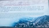 20200703『拉拉山深度3日』  神木、明池、水蜜桃 :20200705拉拉山 (158).jpg