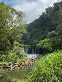 20200703『拉拉山深度3日』  神木、明池、水蜜桃 :20200705拉拉山 (105).jpg