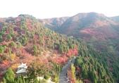 20171023山東濟南(紅葉谷景區):紅葉谷風景區 (37).jpg