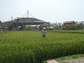 2012台灣屏東六堆客家文化園區:六堆客家園區 (29).JPG