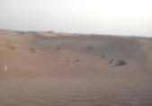 20180901杜拜驚險刺激的沙漠衝沙(Desert Safari):20180901 杜拜衝沙騎駱駝BBQ (3).jpg