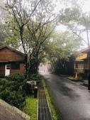 20200528大雪山國家森林遊樂區:2020528~30三日遊_200530_0008.jpg