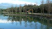 2008/2/20 鳶尾的歸宿:P1060784.jpg