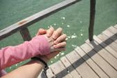 20130404-08 菲律賓愛妮島之我愛海底世界之旅 (I):IMG_2285.JPG