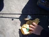 ♡go fishing♡:1548046490.jpg