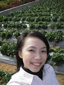 ♡苗栗採草莓♡:1793016746.jpg