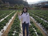 ♡苗栗採草莓♡:1793016747.jpg