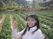 ♡苗栗採草莓♡:1793016748.jpg