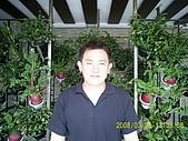 97.3.29麻豆拿輪框之亂逛...:PIC_0031.JPG