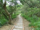 台中大肚山脈:萬里長城步道
