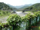 台中大肚山脈:102年綠博會--虹橋
