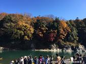 紅葉飄飄15日東京自由行--長瀞泛舟:33●上岸後,立馬跟著人群躍上岩石享風光03.JPG