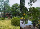 紅葉飄飄15日東京自由行--清澄庭園:43●四季之美皆有不同,來庭園走走!讓風光取代五光十色,為旅程留下精彩回憶.png