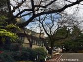 紅葉飄飄15日東京自由行--閃耀著童話森林般迷人色彩的小石川植物園:15●植物園本館是不開放參觀的教學研究室,在經過這棟米黃色的建物後,視野便開始展開.JPG