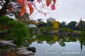 紅葉飄飄15日東京自由行--清澄庭園內的奇石及渡池石塊:03.JPG