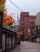 紅葉飄飄15日東京自由行|Day 14--向淺草說再見的早餐:19●還有霧中的晴空塔.JPG