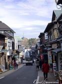 ●熱熱鬧鬧的成田山參道商店街:●長約800公尺的參道商店街.JPG