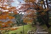 ●成田山公園充滿逸趣的小徑:DSC08413.JPG