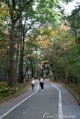 ●成田山公園充滿逸趣的小徑:DSC08391.JPG