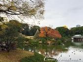 紅葉飄飄15日東京自由行--清澄庭園一眼看不完的池畔風情:17.JPG