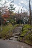 ●成田山公園充滿逸趣的小徑:DSC08399.JPG