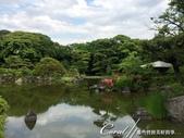 2017初夏14日自由行:●池水、淺窪,各有千秋04.JPG