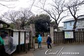 2017關東10日樂得自在:●即便飄著毛毛細雨,依舊有追尋早春庭園風光的訪客.JPG