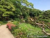 美哉慶澤園--鬧中取靜的小天地:IMG_9638.JPG