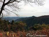 紅葉飄飄15日東京自由行--御岳山:●又登高了些。理所當然景緻也更美了01.JPG