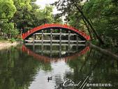 2017初夏14日自由行:●住吉大社的反橋倒影是被多數遊人讚嘆的經典美景之一.JPG