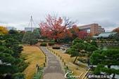 紅葉飄飄15日東京自由行--清澄庭園斑瀾的秋色:08.JPG