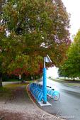 2018加拿大四年一度鮭魚洄遊V.S.洛磯山脈國家公園健走趣(8)--體驗溫哥華的日常風光:13●小徑上的腳踏車租借處,一時之間喚起了心中的騎士魂.JPG