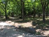 2017初夏14日自由行:●等待區一旁的園區,蟲鳴鳥叫外加徐徐涼風穿過樹林,走走是挺不錯的.JPG