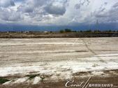 2019Amazing!穿越古絲路上的中亞五國之旅(10-1)--土庫曼斯坦之100%陌生國度探秘:07●土地鹽鹼化是中亞地區的普遍現象,經過灌溉後的水分滲透到土壤中會融解礦物質,但是乾燥地區的水分蒸發快速,