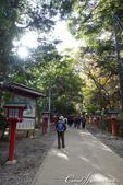 紅葉飄飄15日東京自由行--高尾山:21●也有識途老馬往稀有路徑去...我是初次到訪,還是先走觀光路線好了02.JPG