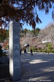紅葉飄飄15日東京自由行--寶登山尋寶趣:12●徜徉秋的太陽下20多分鐘終於進入神社境內.JPG