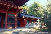 紅葉飄飄15日東京自由行--聚集正能量的香取神宮之旅:28●只要是神宮,就一定看得到民眾奉獻的美酒.JPG