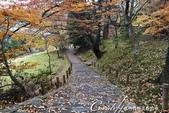 ●成田山公園充滿逸趣的小徑:DSC08408.JPG