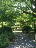 初夏14日自由行--春風吹又生的名古屋城:●公園內依時序盛開的花朵,多少撫平了名古屋城因戰爭受創的遺憾,成為居民散步休閒的空間02.JPG