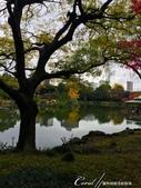 紅葉飄飄15日東京自由行--清澄庭園:35●有那麼一絲像童話森林的畫面.JPG