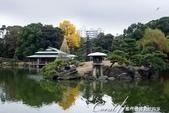 紅葉飄飄15日東京自由行--清澄庭園:12●廣闊的池塘內分佈有三座小島、再加之茶室式的典雅建築與映於水面的小島和樹影形成了庭園內一道亮麗的風景線00.J